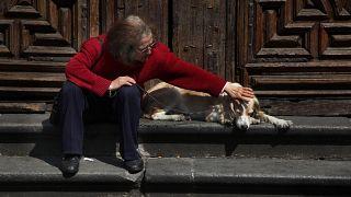 Meksika'da evcil hayvanlar için kilisede kutsama töreni