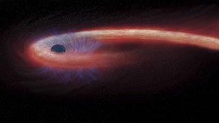 Esta representación artística proporcionada por la NASA muestra una estrella siendo tragada por un agujero negro, y emitiendo una llamarada de rayos X.