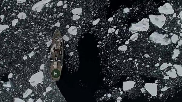 Antarktika'da deniz buzu seviyesi düşüyor