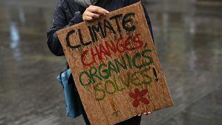 Un appel en faveur du climat