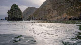 У Халактырского пляжа на Камчатке