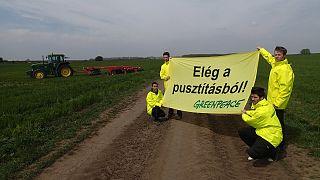 A Greenpeace aktivistái tüntettek a biogazdaság megmaradásáért