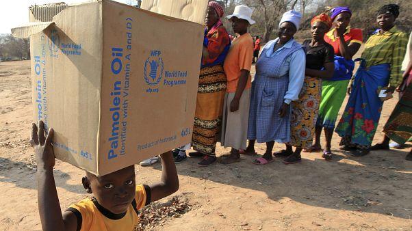 Dünya Gıda Programı Zimbabve'de gıda yardımı dağıtırken