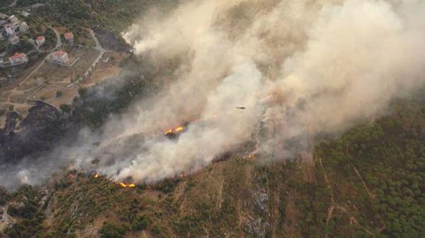تصاویر هوایی از آتشسوزی گسترده در جنگلهای لبنان و سوریه