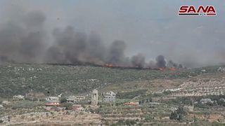 حرائق غابات سوريا