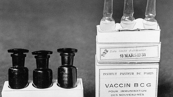 BCG védőoltás 1931-ben