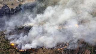 من الحرائق في لبنان