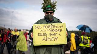 Protest in Lannemezan gegen Sägewerk