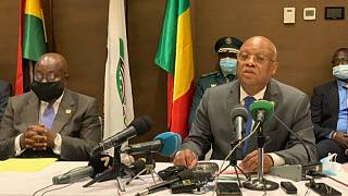 ECOWAS Happy with Mali's Transition Progress