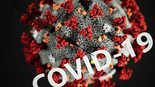 تظهر هذه الصورة  حقنة على رسم توضيحي يمثل فيروس كورونا المستجد،  تولوز، جنوب غرب فرنسا، 7 أكتوبر 2020
