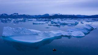 Sondaggio Euronews: chi è responsabile dei cambiamenti climatici e cosa si fa per contrastarli?