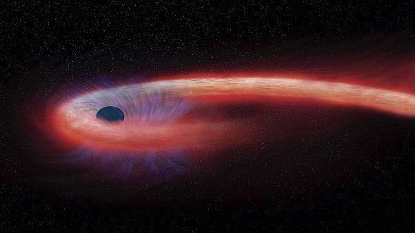 A NASA szerint így nyel el egy fekete lyuk egy csillagot