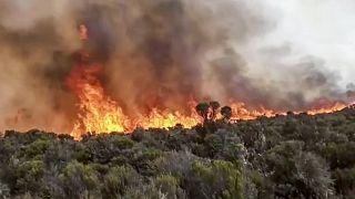 Le mont Kilimandjaro lutte contre les flammes