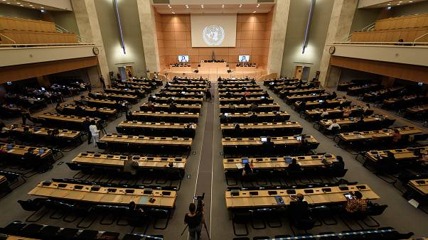 BM İnsan Hakları Konseyi