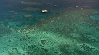 Australia Barrier Reef