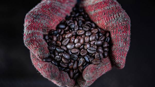 Wood fire roasted coffee beans at the Antong Coffee Factory in Taiping, Malaysia