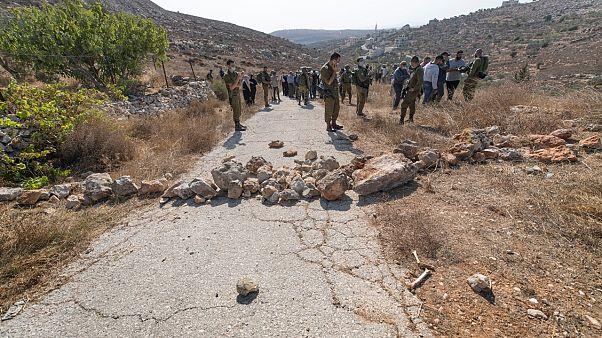 اشتباكات بين فلسطينيين وقوات إسرائيلية ومستوطنين في موسم قطاف الزيتون السنوي