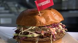 What's the beef? Veggie burger ban faces key vote in Brussels