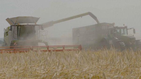 L'agriculture en Europe
