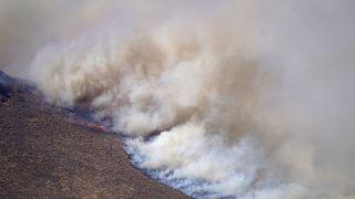 Всего за сутки площадь лесных пожаров в Колорадо увеличилась в шесть раз