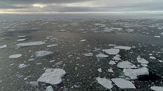 Melting ice sheet