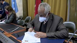 """""""Le cessez-le-feu est un tournant vers la paix"""", selon l'ONU"""
