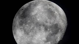 The moon's shadowed, frigid nooks and crannies may hold frozen water in more places and in larger quantities than previously suspected.