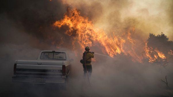 ABD'nin Kaliforniya eyaletinde orman yangınları