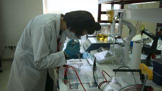 Covid-19'a karşı üretilen antikorlar hızla azalıyor | Araştırma