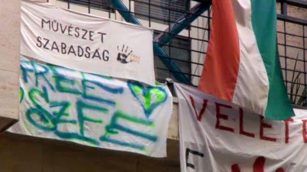 Molinók a budapesti Színház- és Filmművészeti Egyetem bejárata fölött