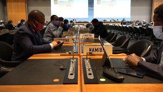 Les Etats-Unis rejettent la candidature de Ngozi Okonjo-Iweala à l'OMC