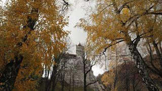 Коронавирус в замке Дракулы