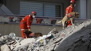 Members of rescue services with sniffer dogs search in the debris of a collapsed building for survivors in Izmir, Turkey, Sunday, Nov. 1, 2020.