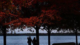 شاهد: مسلمو كندا يقدمون الورود إلى المارة في تورونتو في مبادرة لمكافحة رهاب الإسلام