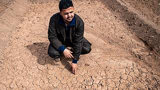 Drought threatens crops in Morocco