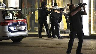 Operação policial a decorrer no centro da capital da Áustria
