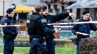 Viyana'da silahlı saldırı