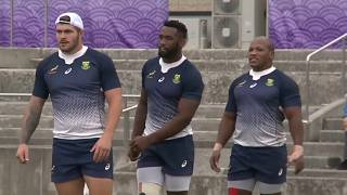 South Africa's Springboks to stick with Rugby Championship