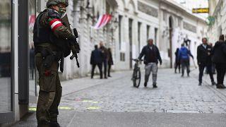 Wien: Täter soll allein gehandelt haben