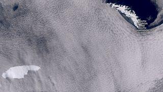 A satelite image showing the iceberg floating towards the sub-Antarctic island of South Georgia.