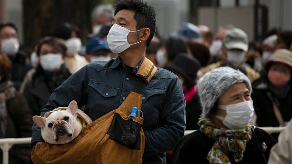 اكنتاز الحيوانات .. مشكلة تحاول السلطات اليابانية إبجاد حل لها