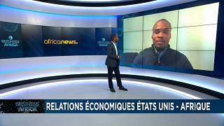 US - Africa economic relations and prospects