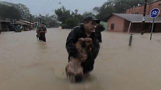 Un hombre rescata a su perro en Nicaragua tras el paso del Eta
