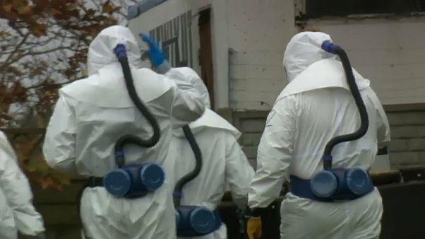 Nyércről emberre terjed a koronavírus Dániában