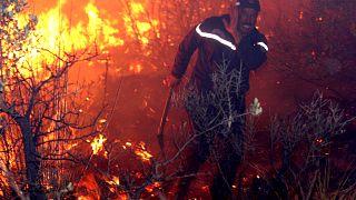 An fireman struggles against a fire, late 01 September 2007 night in Tzarift, near Tlemcen, north-west of Algeria.