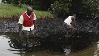 Nigeria's Niger Delta 25 years after Saro Wiwa's execution