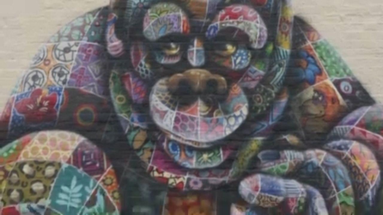 Louis Masai réalise des fresques murales sur les animaux en voie d'extinction