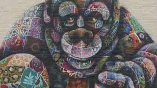 Ουρακοτάγκος σε τοίχο: έργο του Λ. Μασάι