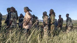 Le TPLF accuse l'Érythrée de prendre part au conflit