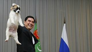 قربانقلی بردی محمداُف، رئیس جمهوری ترکمنستان در حال اهدای یک قلاده سگ اصیل ترکمن به ولادیمیر پوتین، رئیس جمهوری روسیه، سال ۲۰۱۷